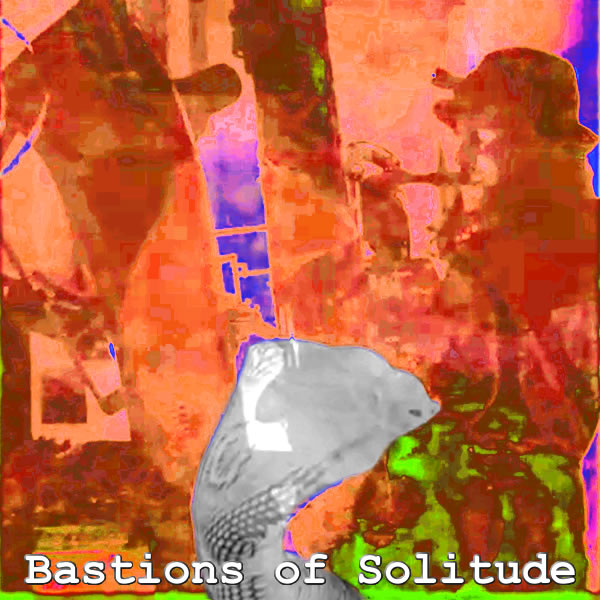Bastions Of Solitude